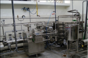 Fruit and Vegetables Processing Plant